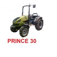 PRINCE 30